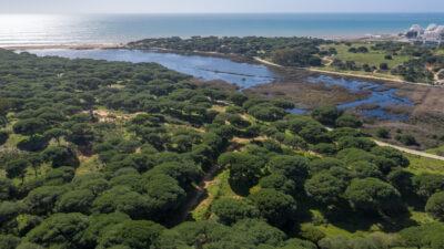Development plot close to the beach